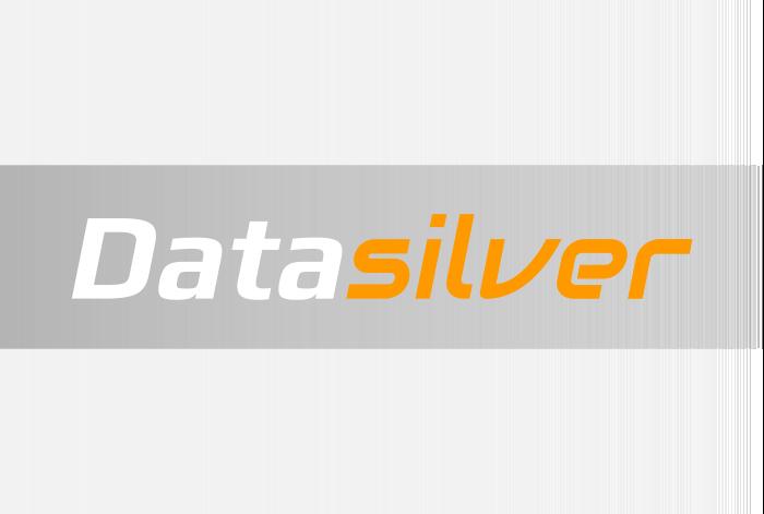 Logotype of a company DataSilver