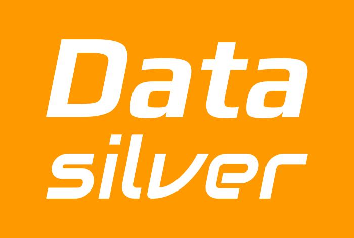 Logotype of DataSilver company